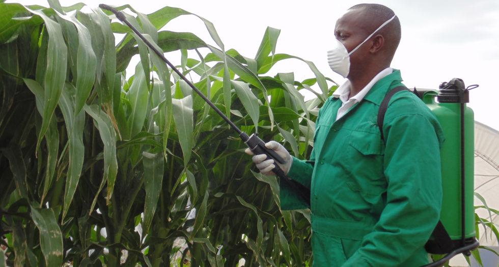 Chemicals & Fertilizers