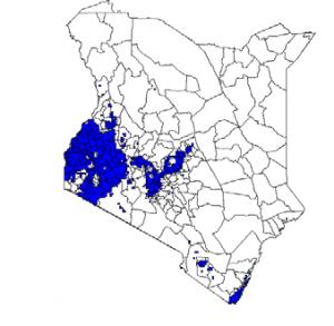 Calciprill – Baltoncp Amiran Kenya