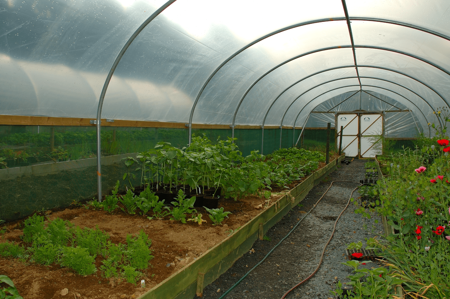 Net Houses & Greenhouses