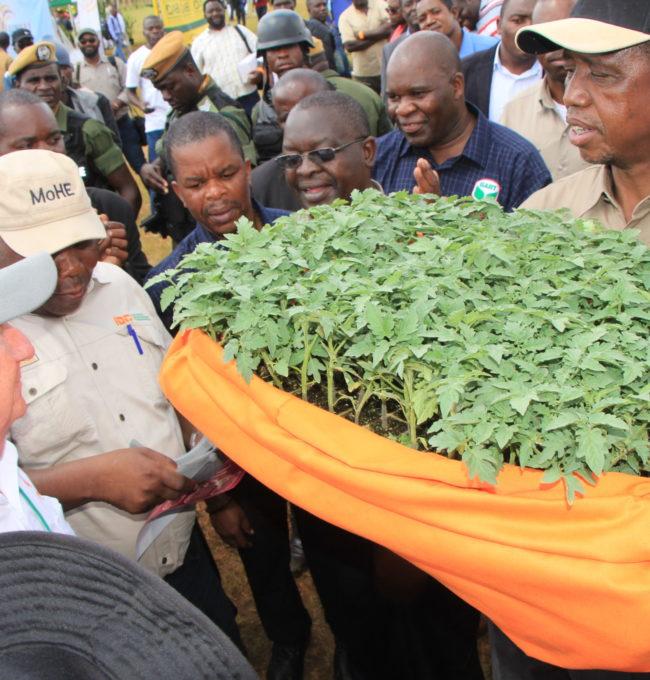 Agritech Expo – Gart Farm Chisamba